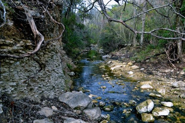 Green belt creek. Austin got green Yo!
