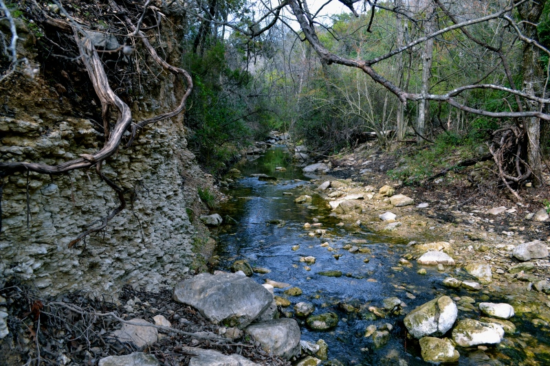 Green belt creek. Austin got green Yo!