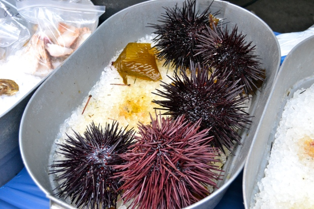 Friggin Sea Urchins at the Farmers Market...don't worry I didn't try those guys